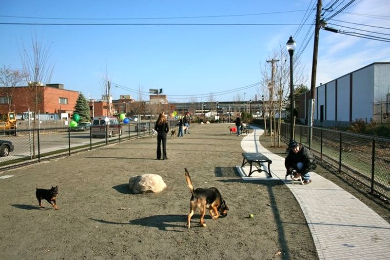 Zero New Washington Street Dog Park