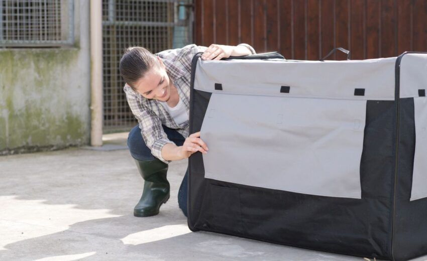 The best insulated kennel covers