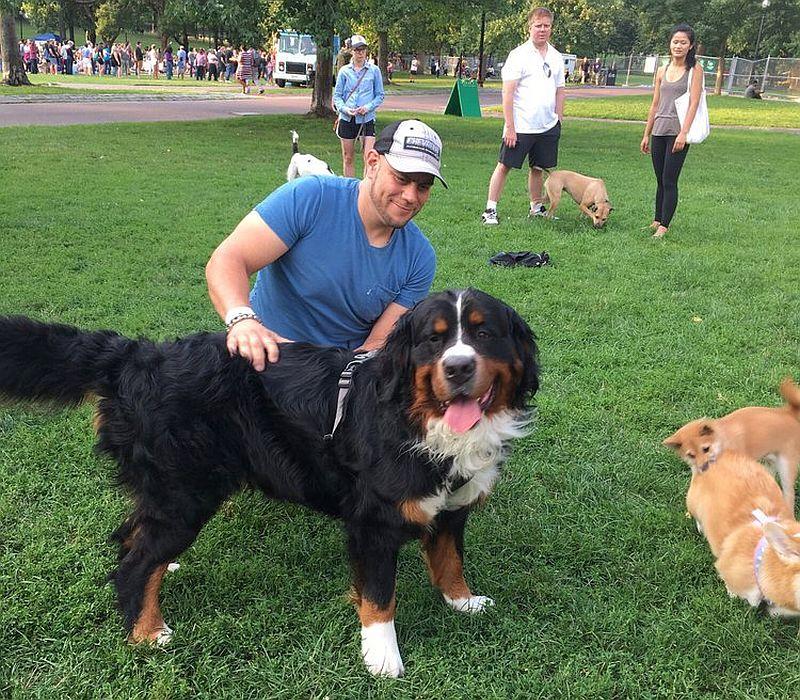 Boston Common Dog Park