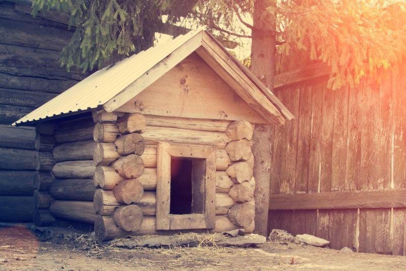 dog houses provide shade