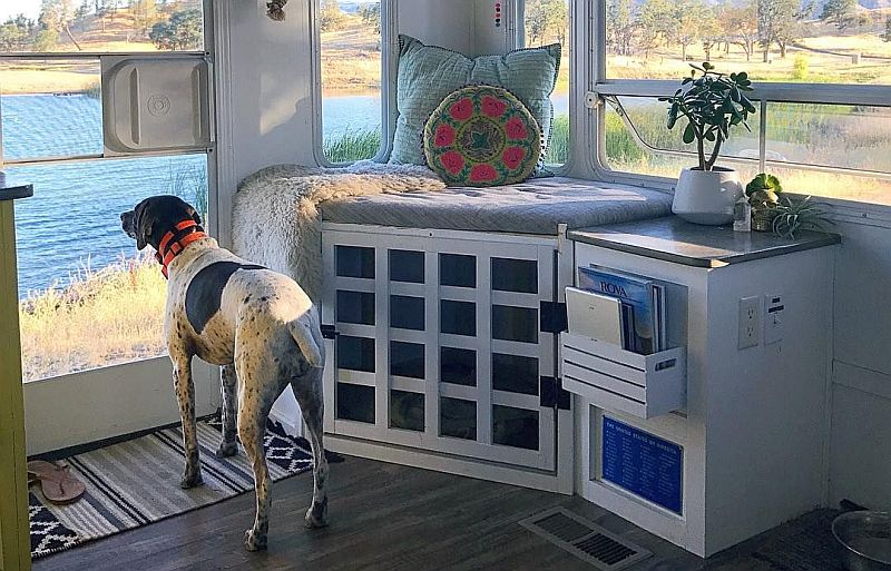windows are helpful for tiny house dogs