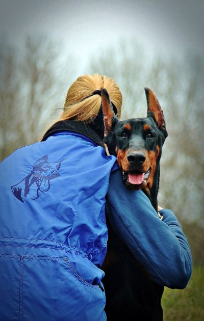 what makes a dog loyal