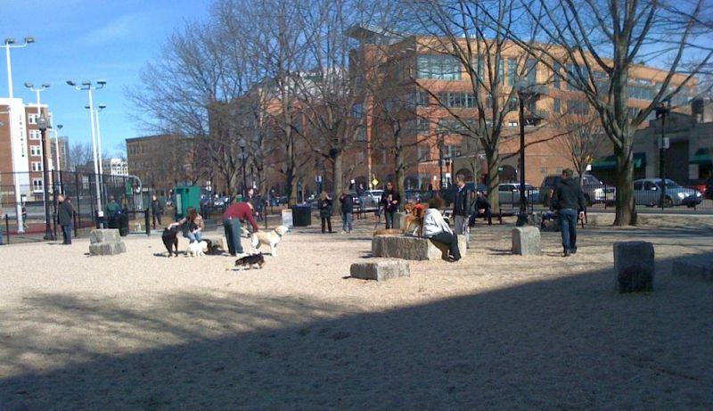 Peters Park Dog Park