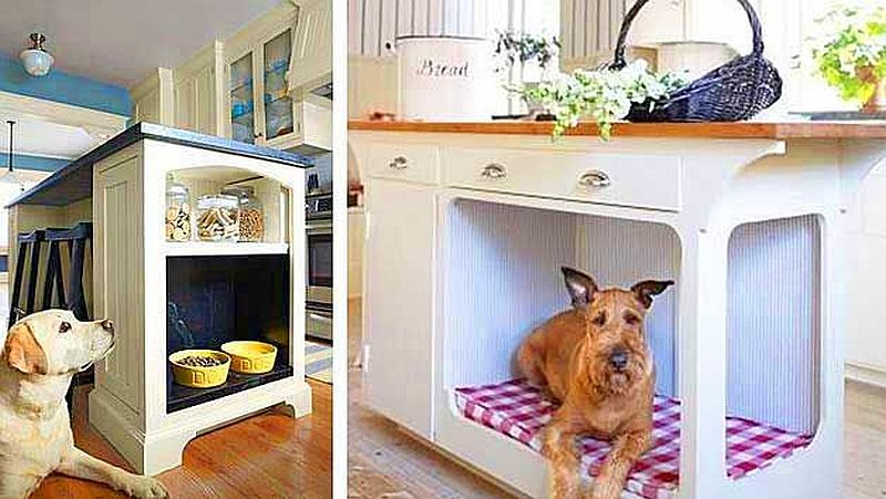 using storage space for pets in tiny houses