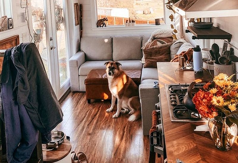 maximize storage space for your dog