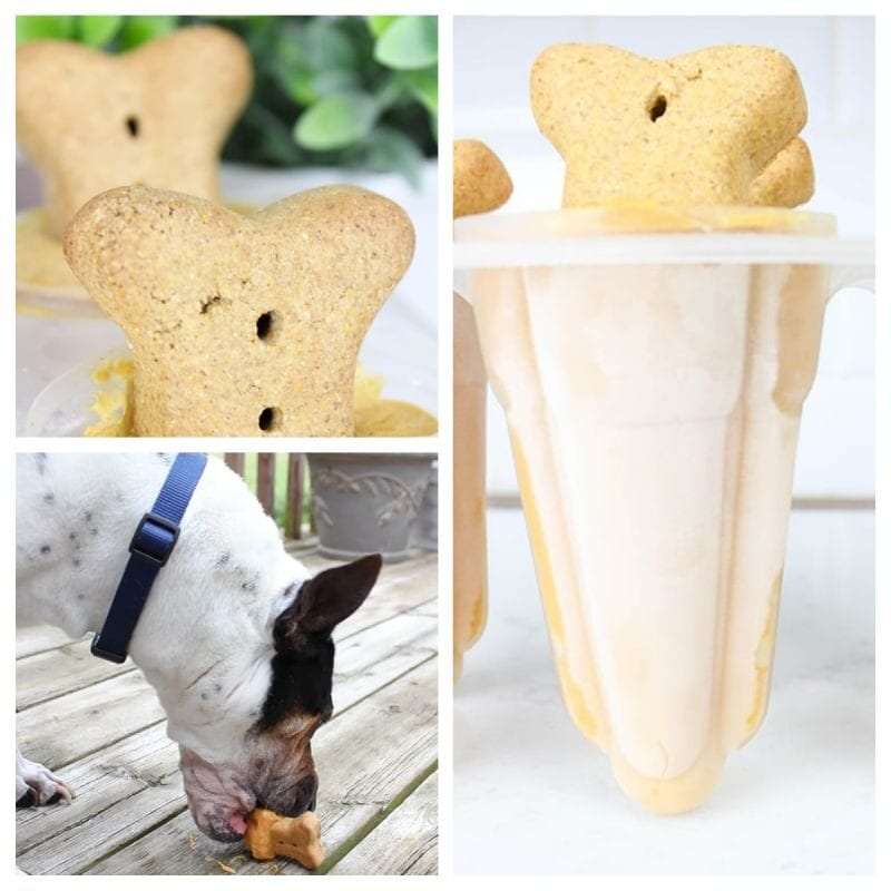 Pumpkin and peanut butter popsicle for dogs