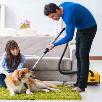 Using Flowbee to Cut Dogs Hair