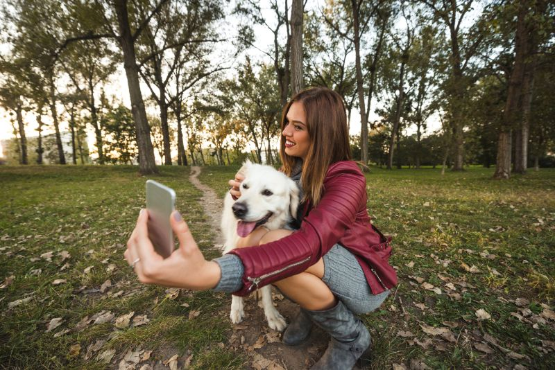 how to make your dog an Instagram star