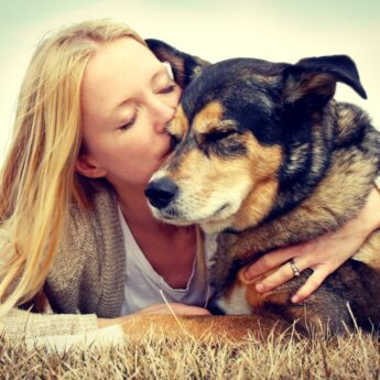 How to Preserve Memories with Your Dog