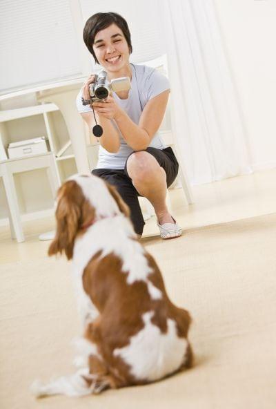 video your pet for Instagram