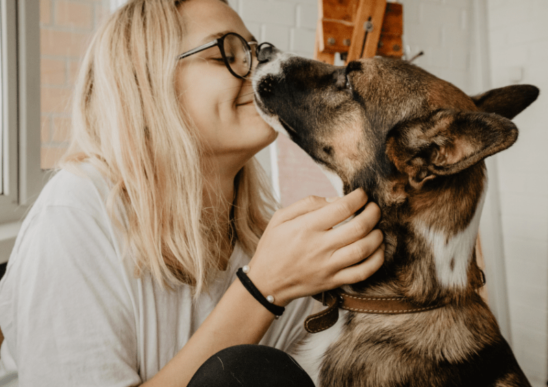 bond with dog