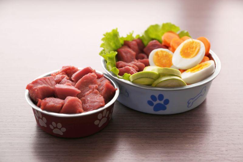 benefits of fresh dog foods