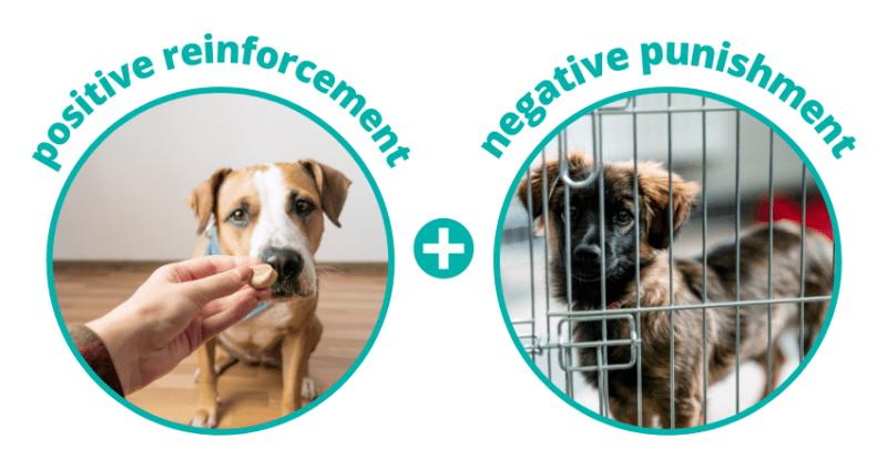 positive reinforcement and negative punishment