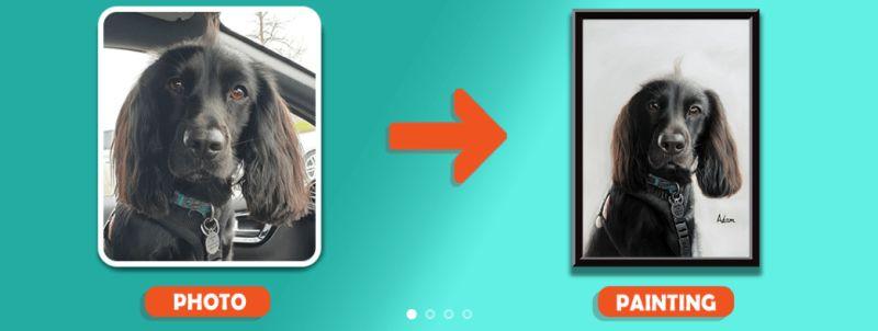PortraitFlip review