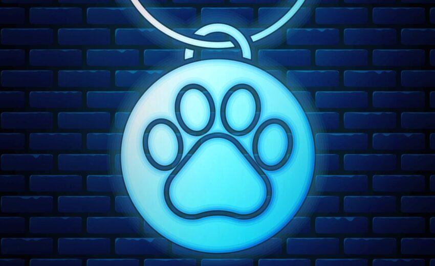 Glow-in-the-dark dog ID tag